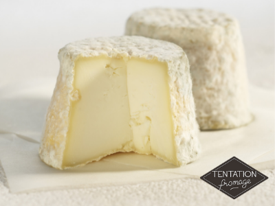 fromage maconnais