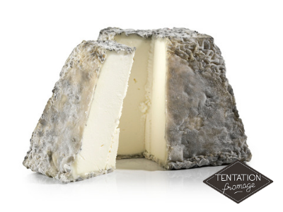fromage valencay