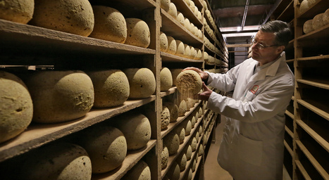 fromagerie cesar